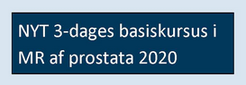 2021 MR Prostata Kursus – 3. basiskursus 29/9 – 1/10 2021